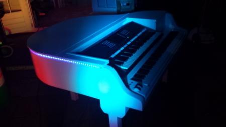 piano entertainment - mini grand